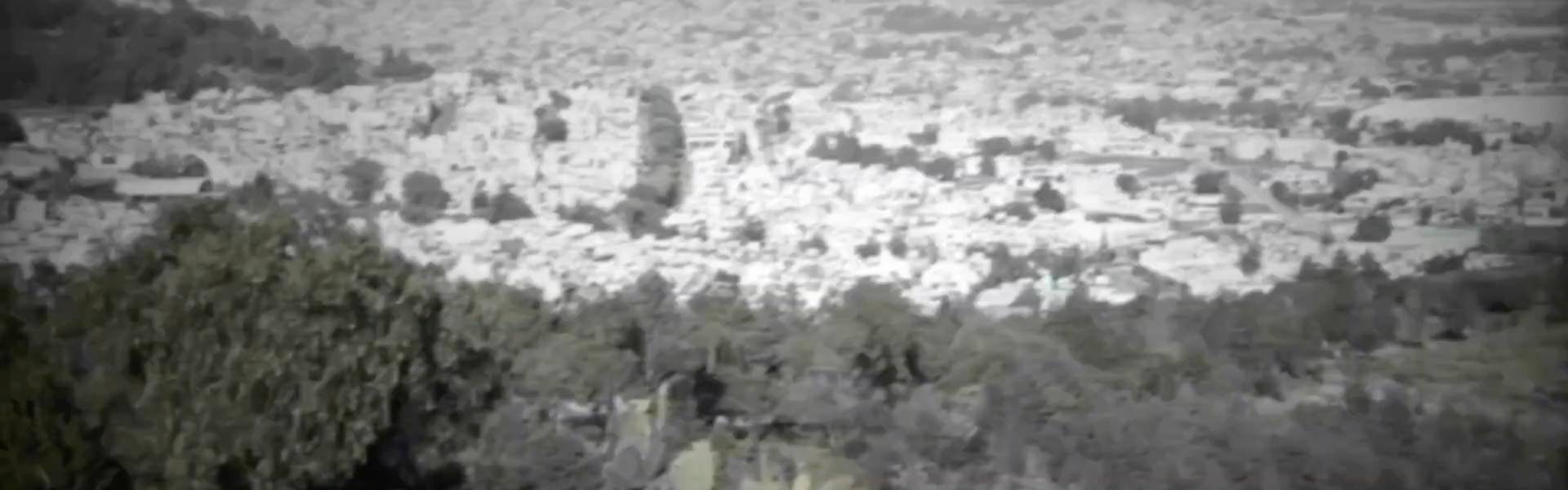 Captura de Pantalla 2021-08-08 a la(s) 19.52.33